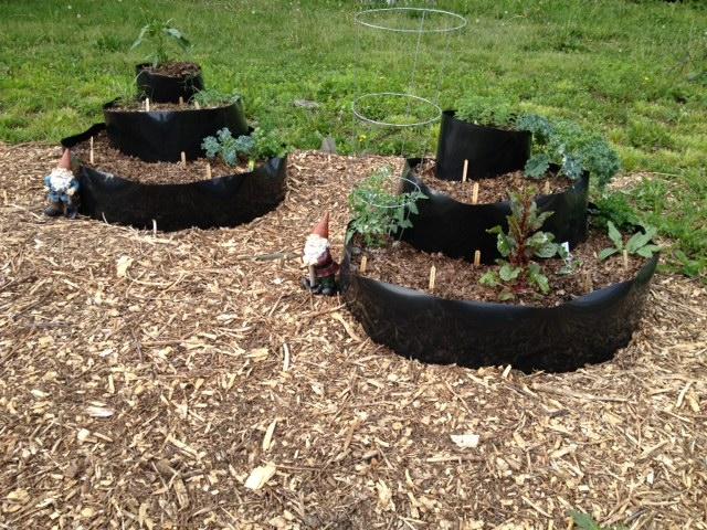 Milk Crate Gardening Laura Brunos Blog