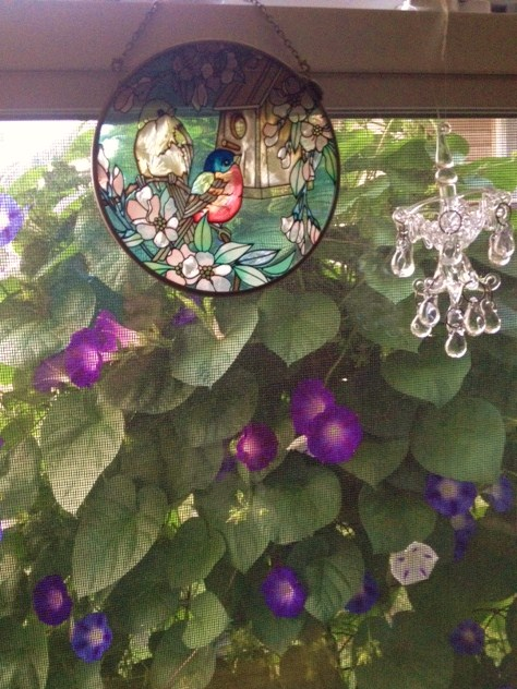 Bird, Chandelier and Morning Glories