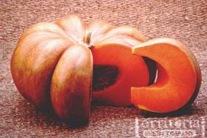 Fairy Tale Pumpkins