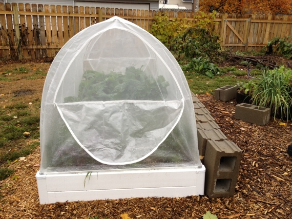 Guarden Cold frame