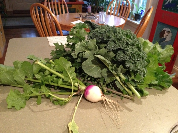 turnip and messa greens