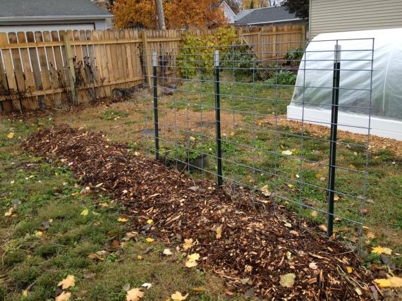 vertical gardening prep