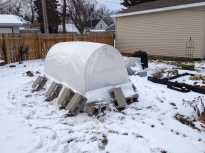 Snowy cold frame