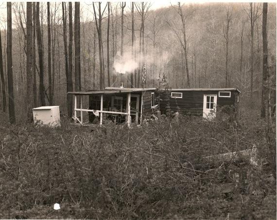 Sophia's cabin