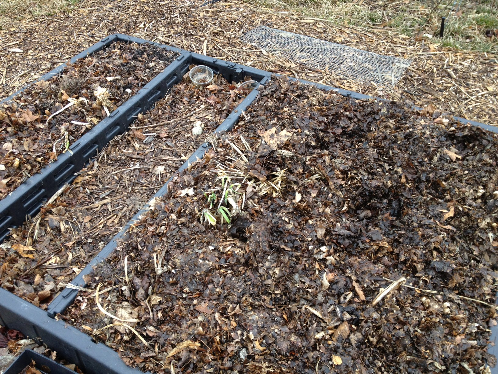 the bed bed a reclaimed sleep number bed frame filled with compost and leaf - Sleep Number Bed Frame