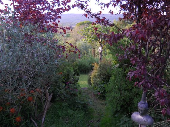 May 2011 Bealtaine Cottage 039