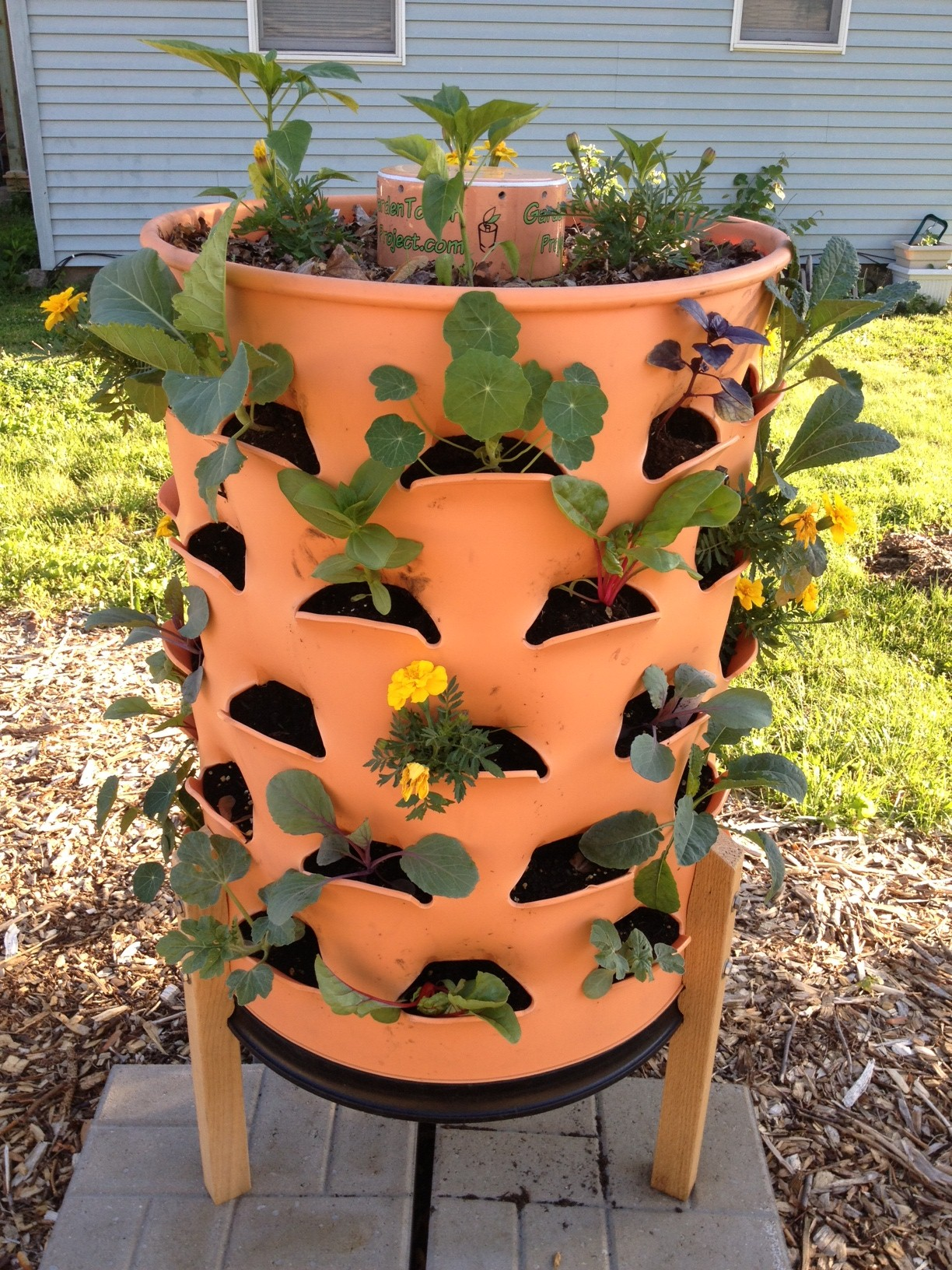 Backyard Garden Difference : Garden update trellises flowers and stacking functions