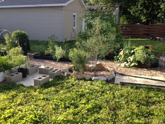Lots of areas ready for more wood mulch, but overall, the gardens themselves are growing well.