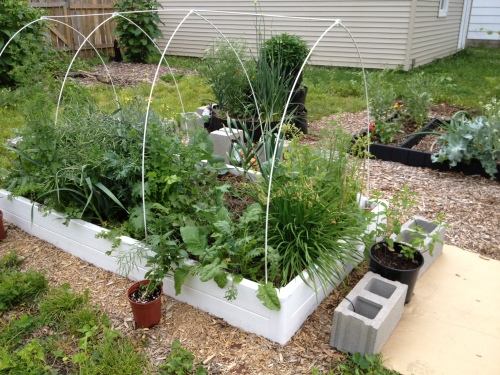 """The """"Guarden"""" bed, minus its coldframe"""