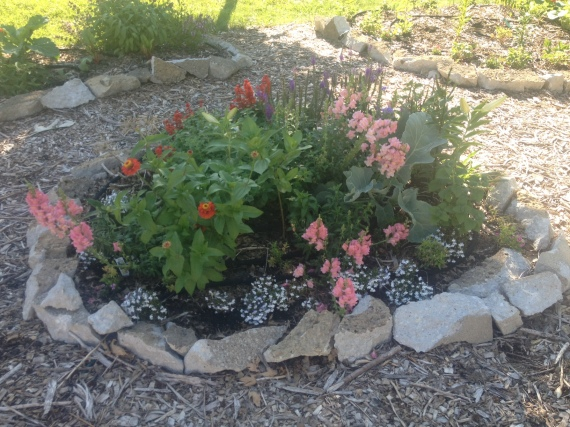 front flowers 7-13
