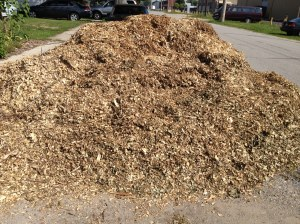 Yes, we have more mulch! This is the third load this size or larger this year. I'll need to clear it fast, because I don't think I'm technically allowed to have it on the easement spilling over into the road.