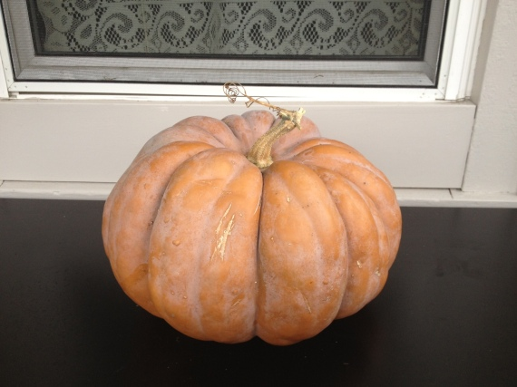 first ripe fairy tale pumpkin