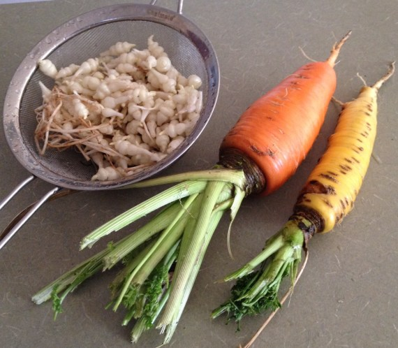 carrots and Chinese artichokes
