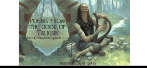 welsh-taliesin-pic