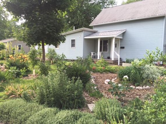 May 2016 front yard