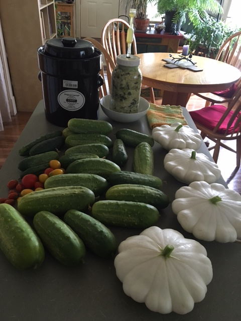 August Morning Produce