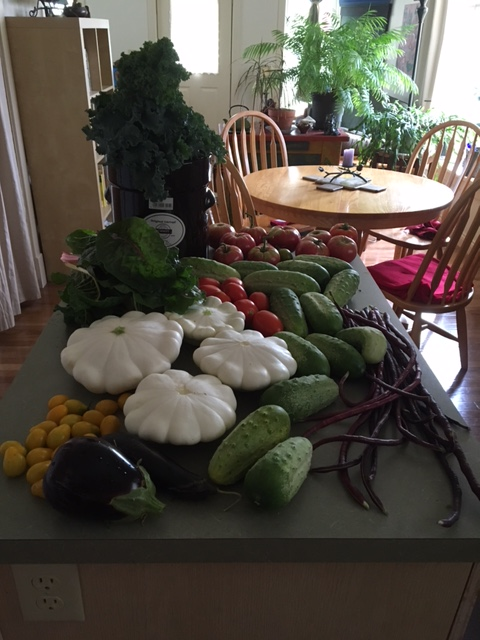 morning harvest